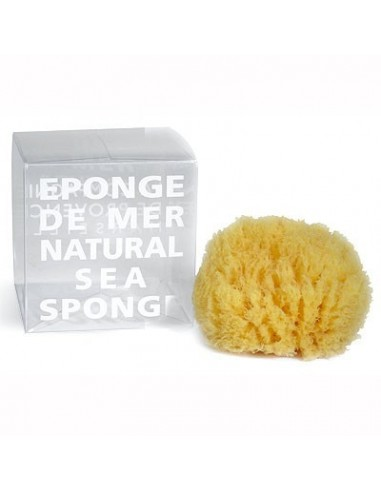 Natural sea sponge in a gift box