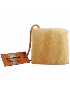 Loofa sponge