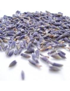 Lavendelblüten tiefblau, 1 Kg
