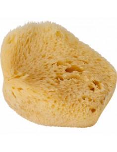 Natural Sponge Fine, Mediterranean, Small 8 cm